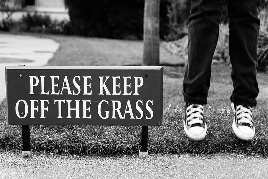 05a cambridge grass