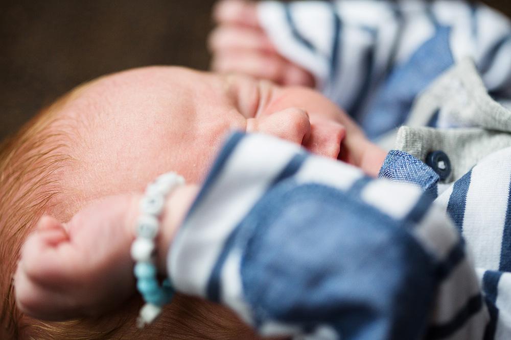 newborn portrait family photo session