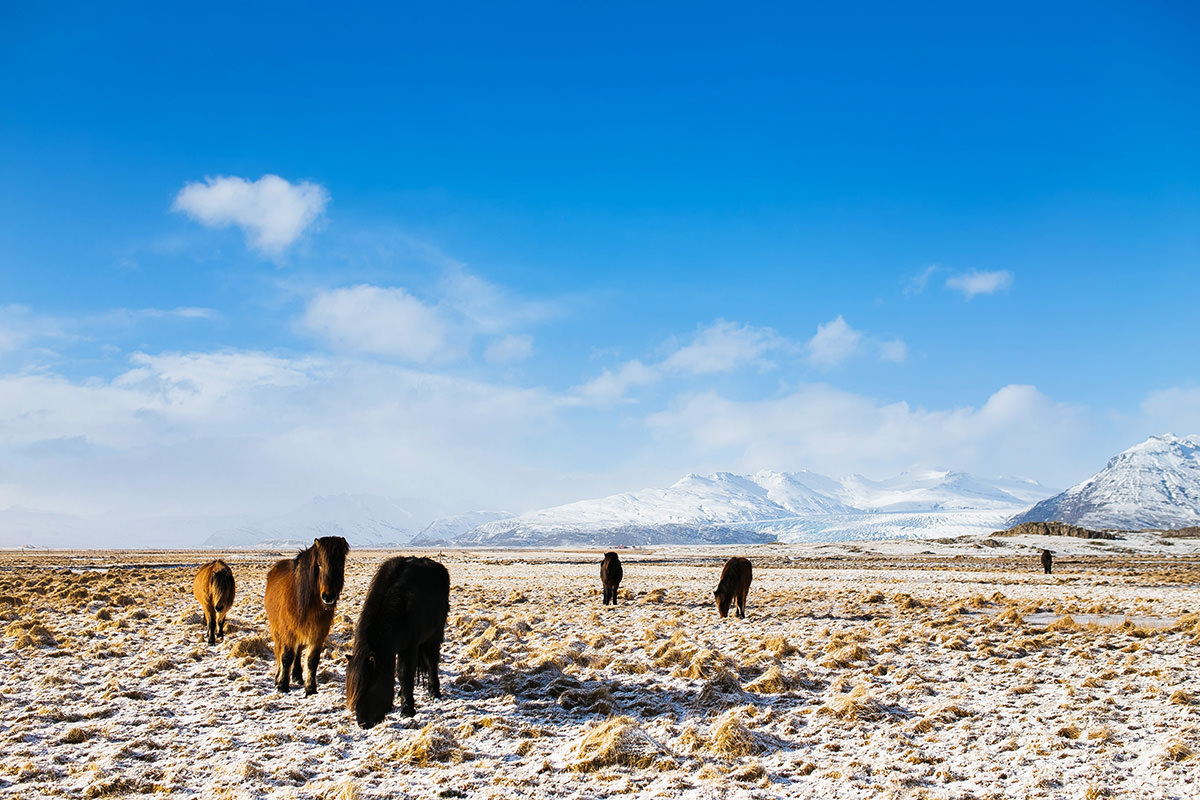 17_Iceland