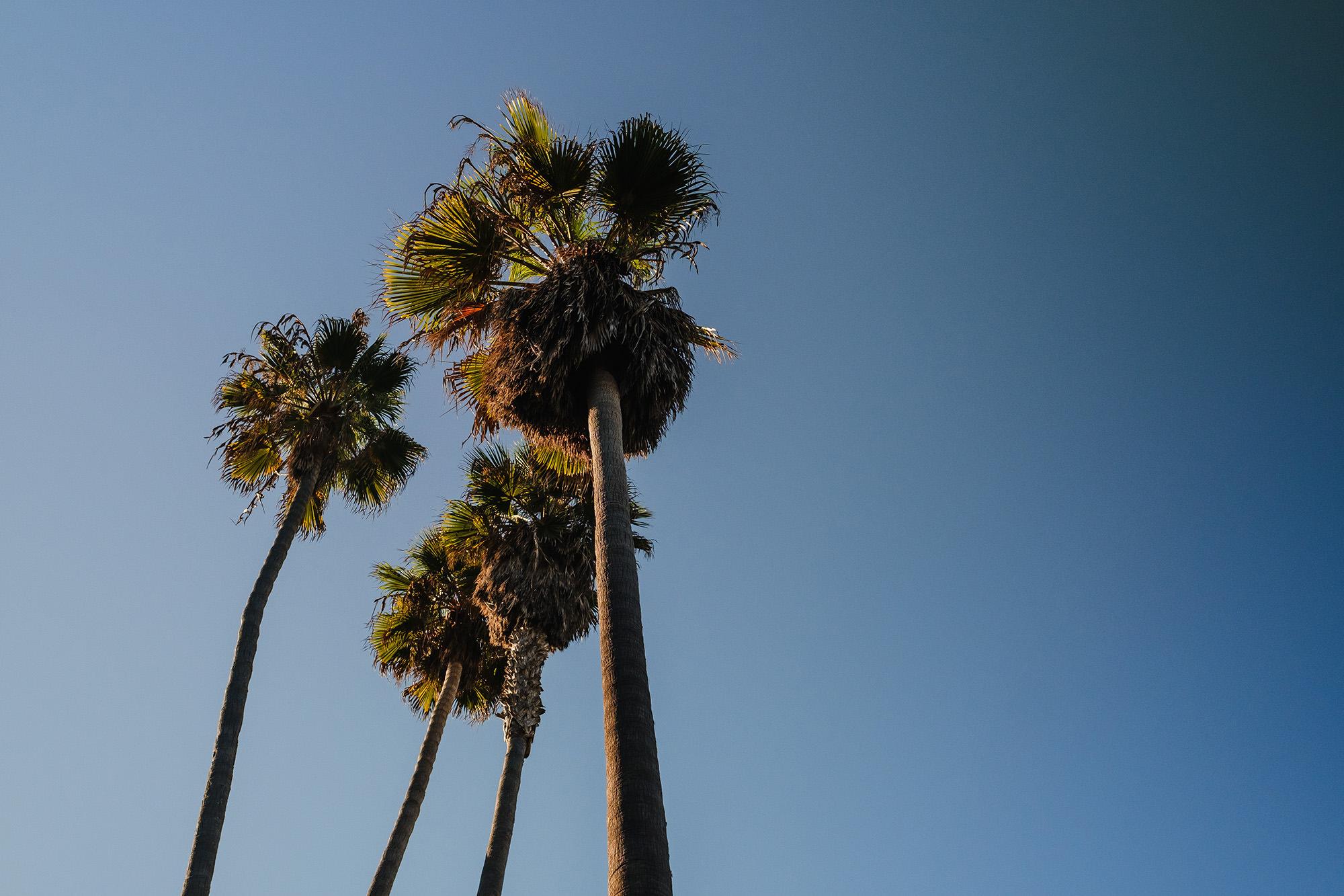 Travelling through California in November