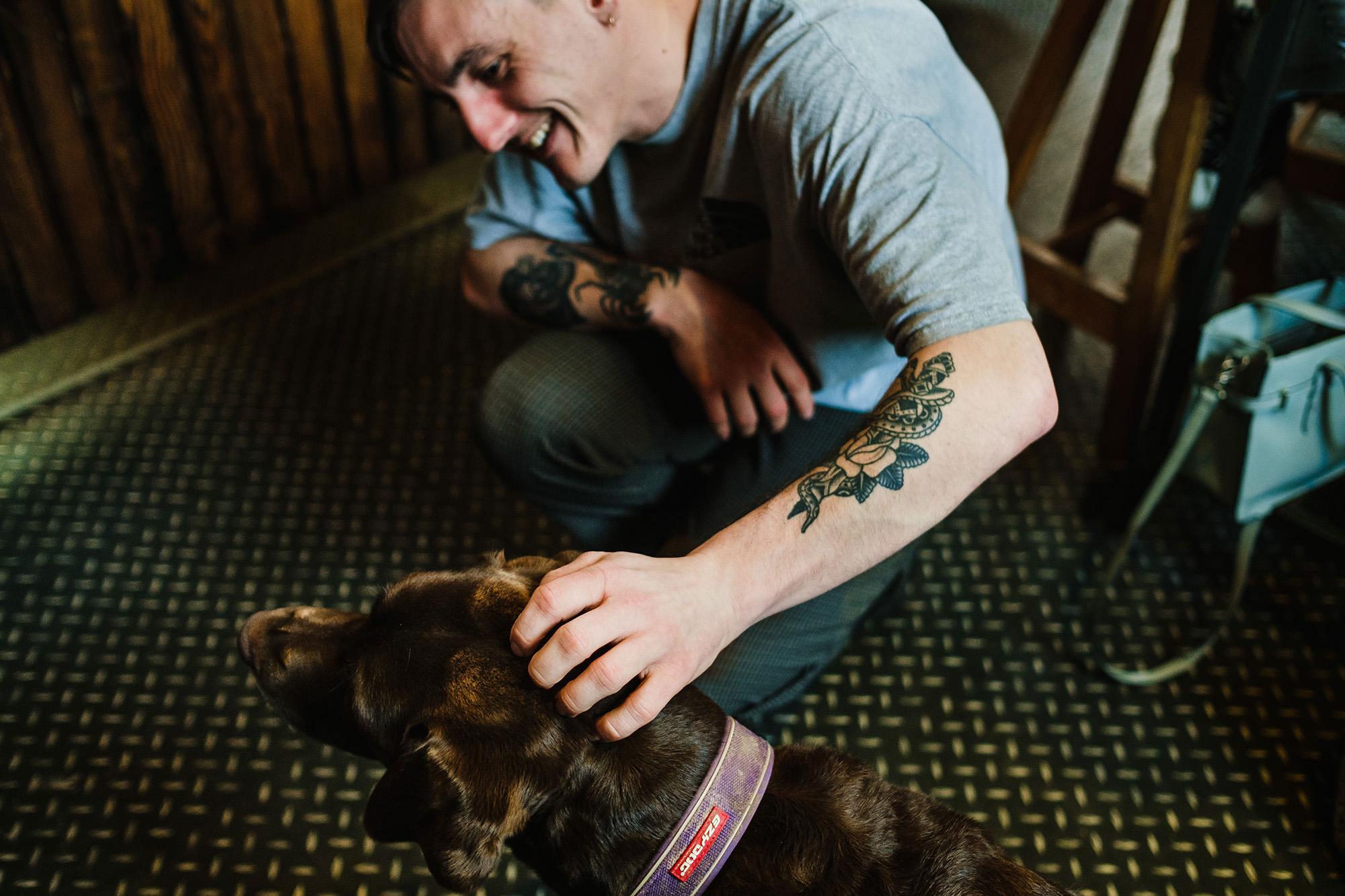 labrador dog in coffee shop