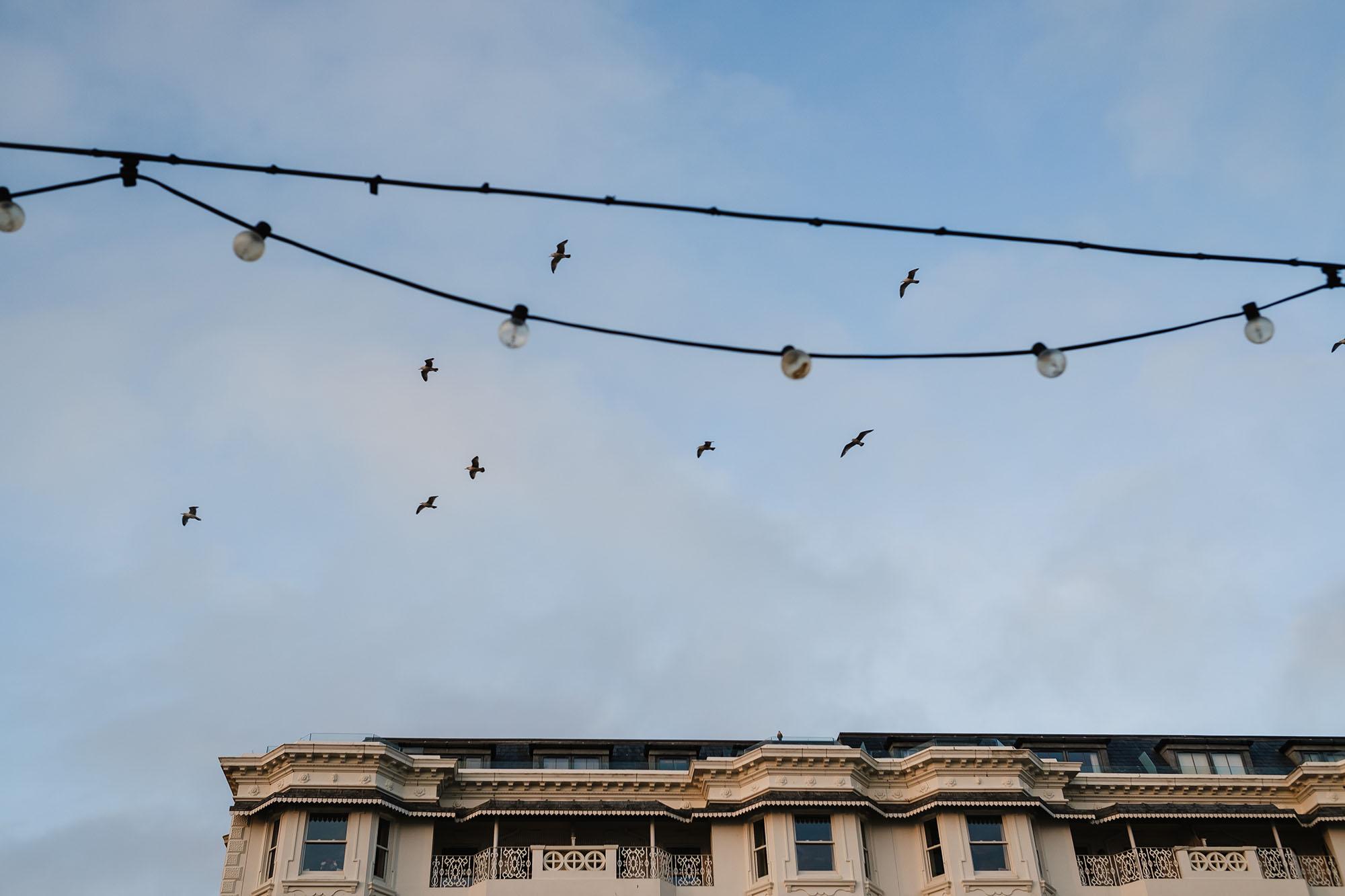worthing sky with birds