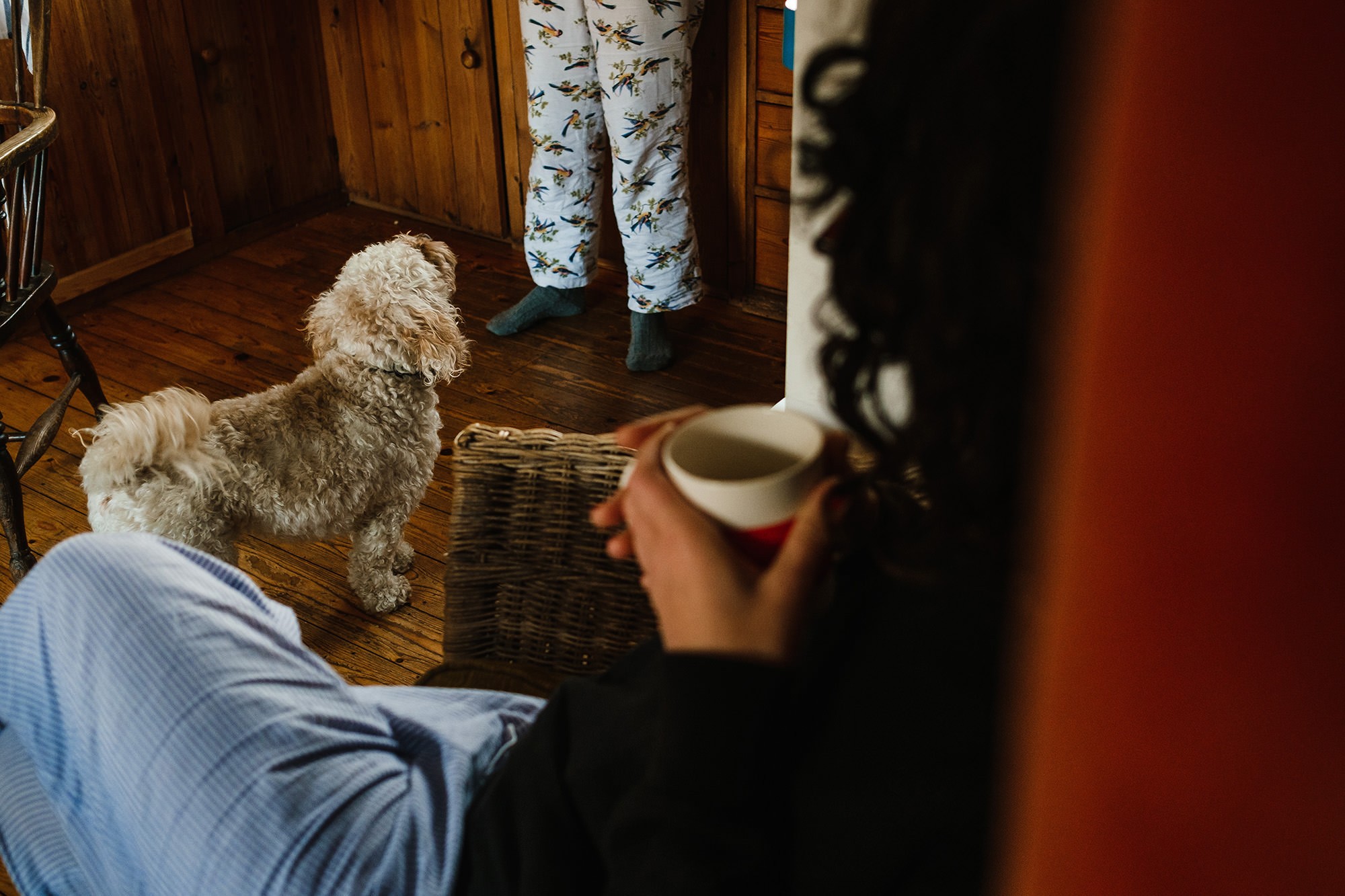 dogs and breakfast documentary vacation photography