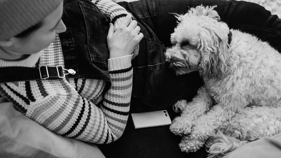 documenting life with dogs