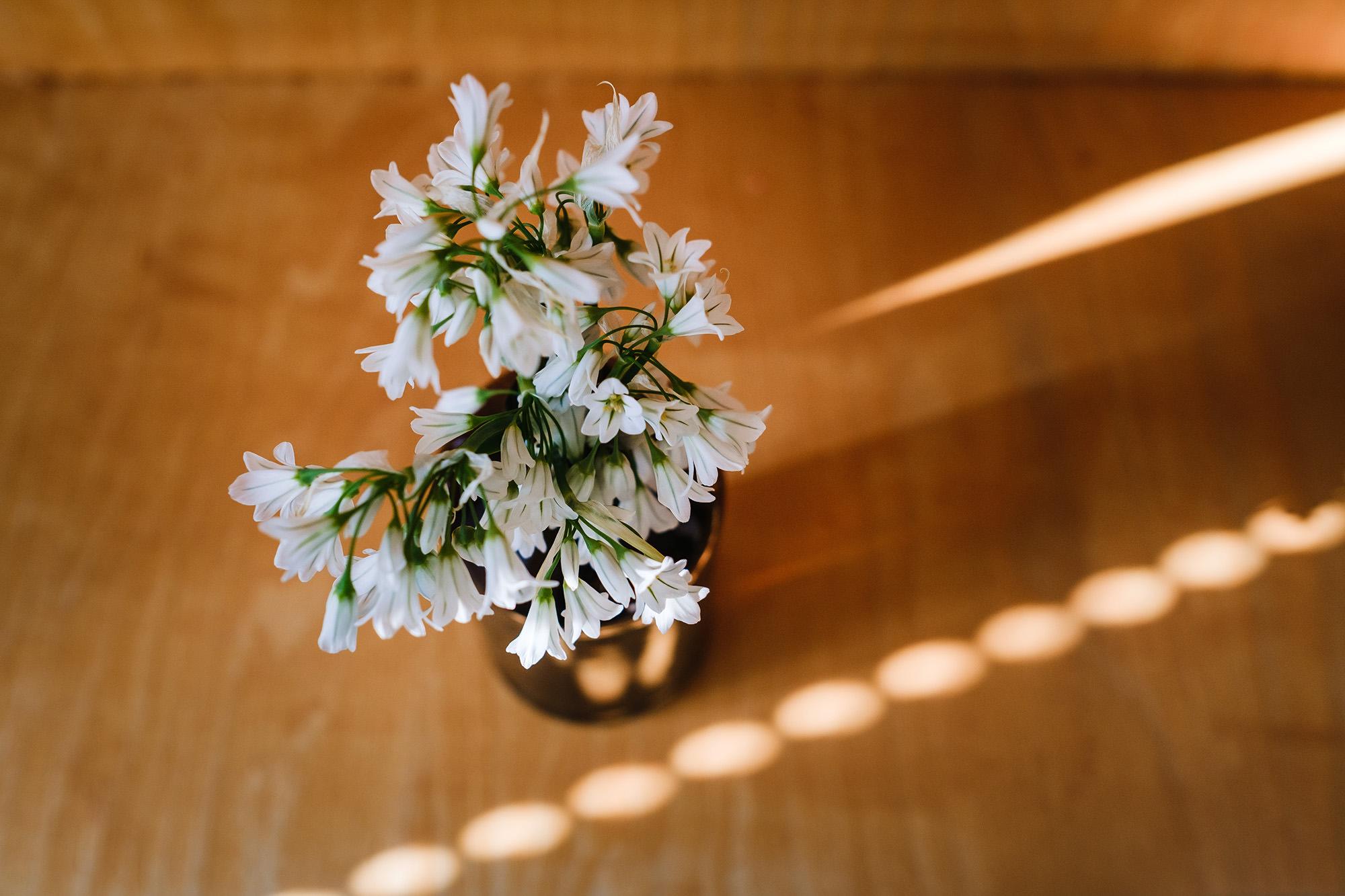 lockdown diaries with flowers