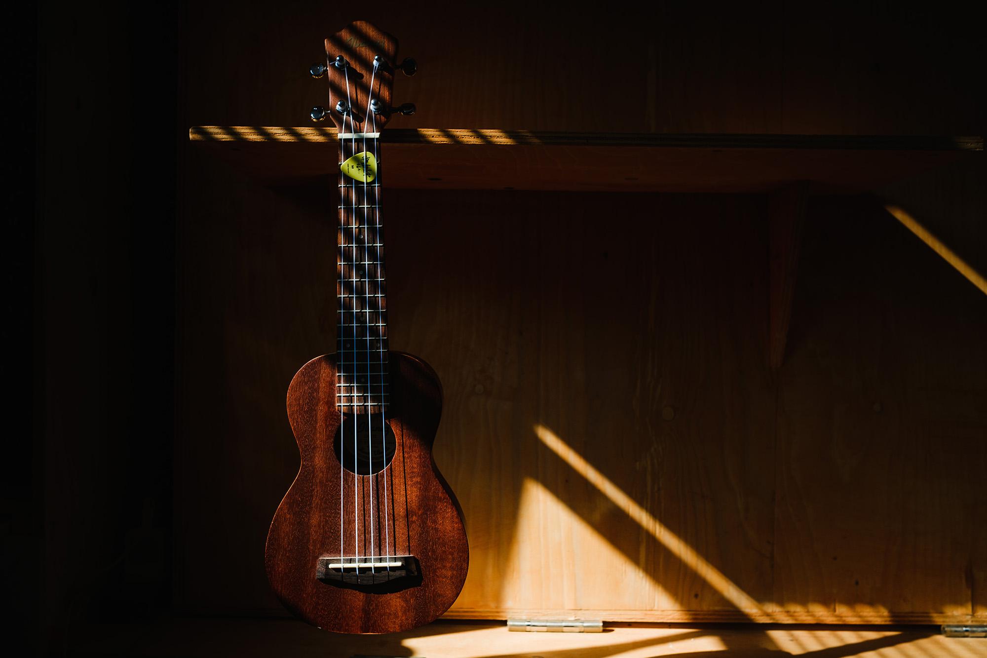 ukulele in the sunshine