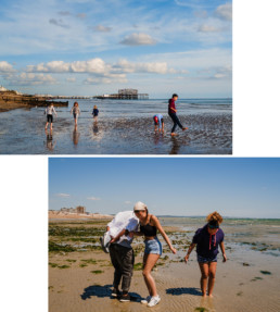 low tide minis - mini family photo session