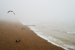 brighton mist wall calendar 2021 january